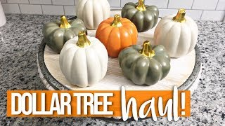DOLLAR TREE HAUL July  2018 | I WENT PUMPKIN CRAY CRAY