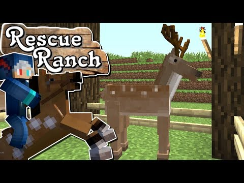 The Wolf Research Centre : Rescue Ranch : Episode 7 : MineCraft