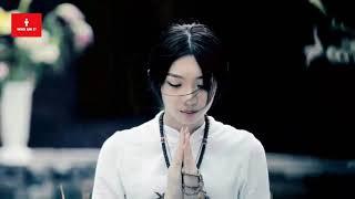 Nhạc Thiền Đàn Tranh