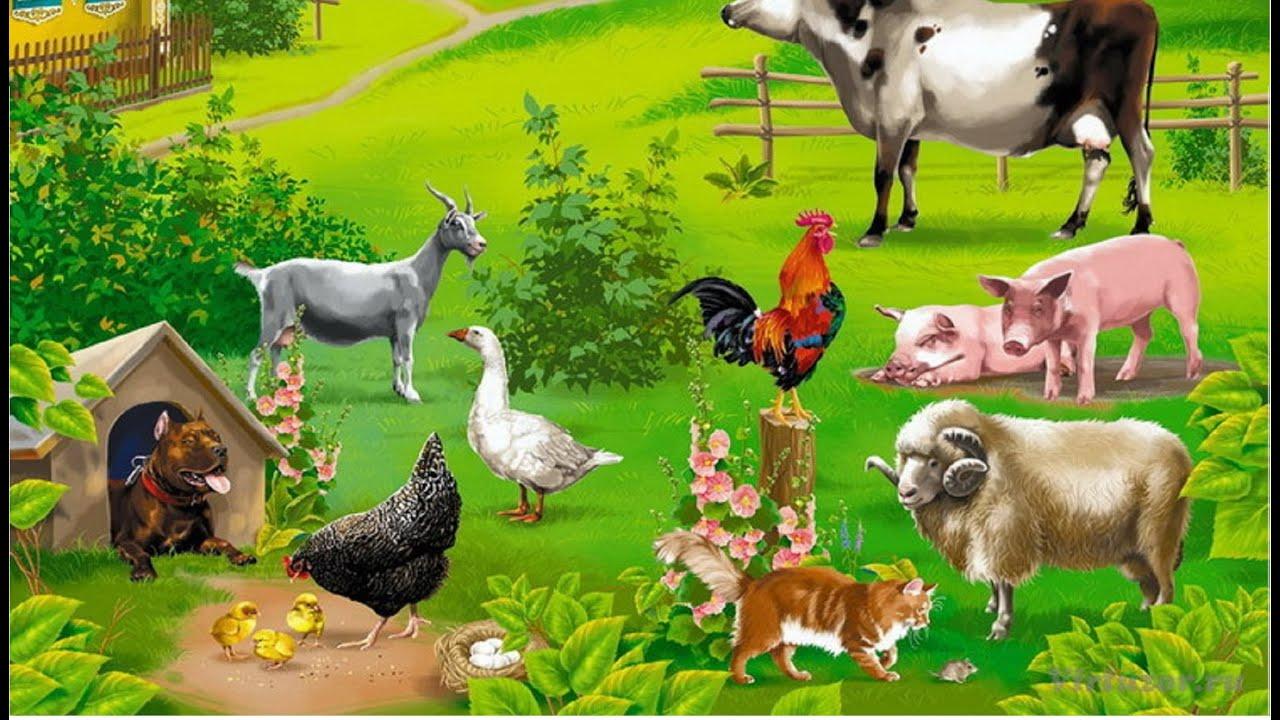 Уроки фермы на русском 20 фотография