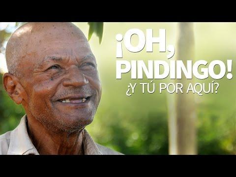 ¡Oh, Pindingo!, ¿y tú por aquí?