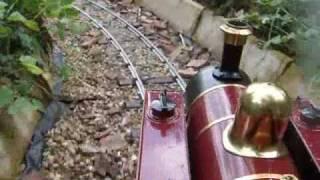 "Maxitrak live steam 5"" Gauge Swallow"