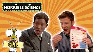 Horrible Science - Charles Richard Drew | Learn About Blood Transfers | Science for Kids