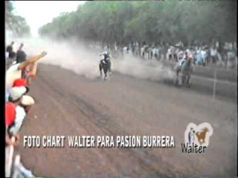 Videos Colonia Tirolesa (23-01-11)