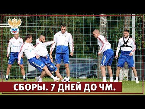 Сборы. 7 дней до ЧМ l РФС ТВ