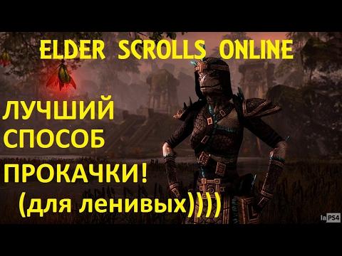 The Elder Scrolls Online #118 - Лучший способ прокачки персонажа для ленивых))