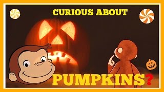♡ Curious George - Pumpkin Educational Halloween Video Story For Children English