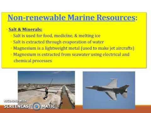 Unit 4 Marine resources