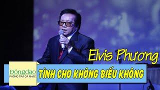 Tình Cho Không Biếu Không (L'amour C'est Pour Rien) - Elvis Phương [Nhạc Pháp Lời Việt]
