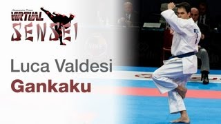 Luca Valdesi - Kata Gankaku - Bronze final - 21st WKF World Karate Championships Paris Bercy 2012