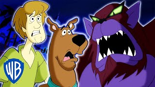 Scooby-Doo! | How To Catch El Chupacabra | WB Kids