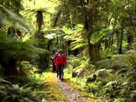 Wilderness New Day New Zealand Wilderness