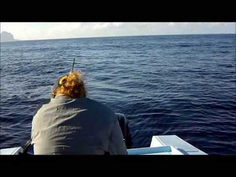 Big Game Fishing Tamarin Mauritius