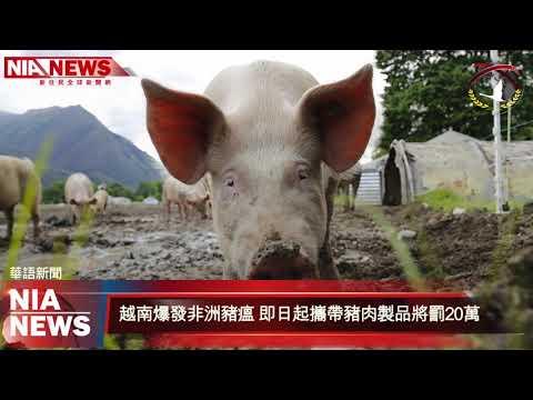 0301 NIA影音新聞—中文