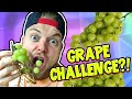 GRAPE CHALLENGE?! - Questions & Answers! [3]
