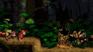 Donkey Kong Country 2 102% Walkthrough : Gloomy Gulch - Ghostly Grove