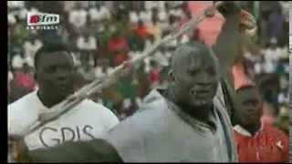 Lutte | Tyson vs Gris Bordeaux :: Bakou de Gris Bordeaux