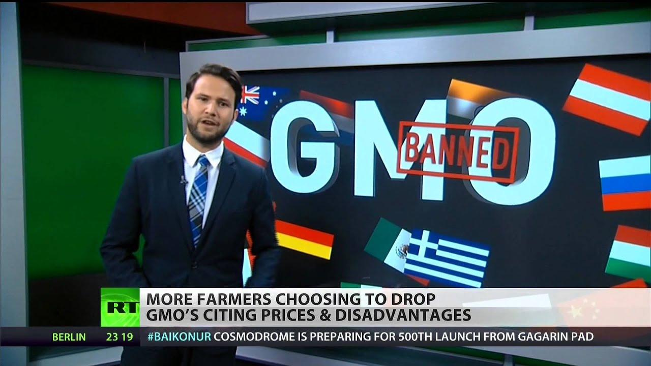 Farmers ditching Monsanto as GMO backlash grows