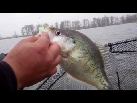 Crappie Fishing Reelfoot Lake, Easter Weekend 2013, Josh Gowan and Chippy Chipman