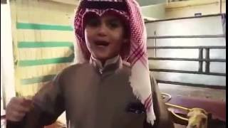 """بالفيديو: طفل كويتي يذبح """"جملًا"""" ترحيبًا بالملك سلمان"""