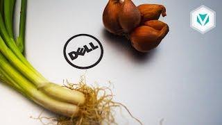 Dịch vụ Bảo hành của DELL!!