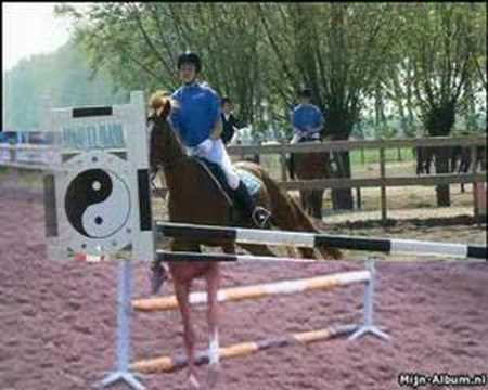 Online horse jumping clinic