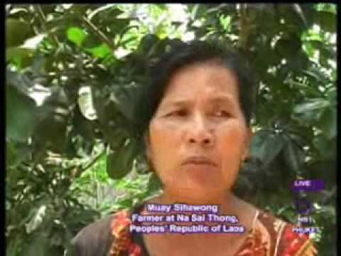 Thai farming project in Laos