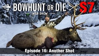 Bowhunt or Die Season 07 Episode 16: Another Shot