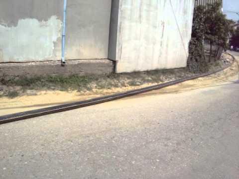 Najduza zmija na svetu -