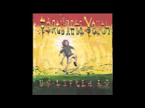 Fortunate Youth - Salvation