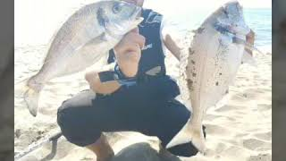 SURFCASTING- pesca all