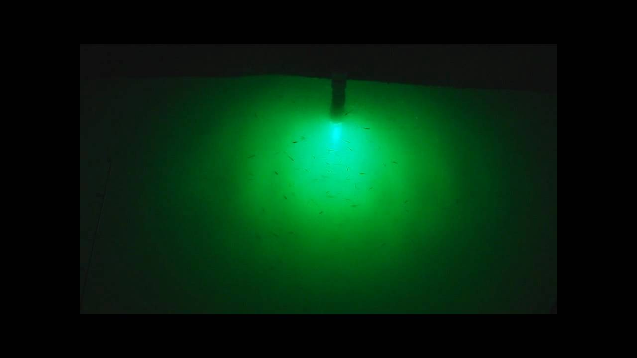 Night fishing for crappie w the green monster youtube for Green monster fishing light