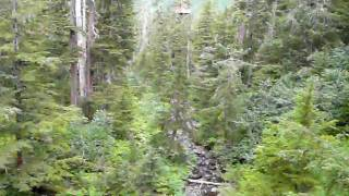 Alaska ZipLine Adventures over the creek