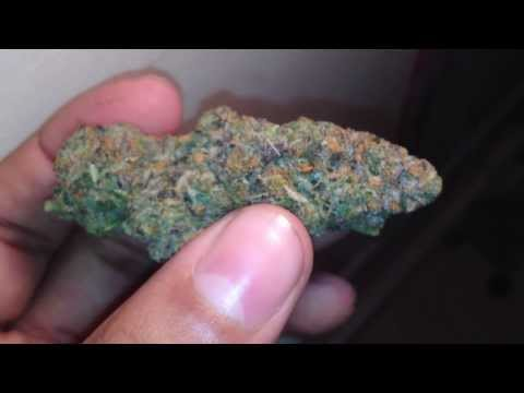 Girl Scout Cookies Strain (thin mints) Close Up HD