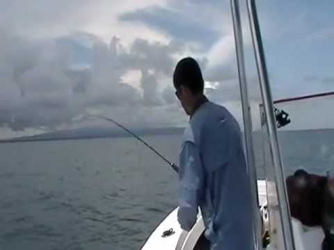 Jigging Fishing Sierpe Costa Rica
