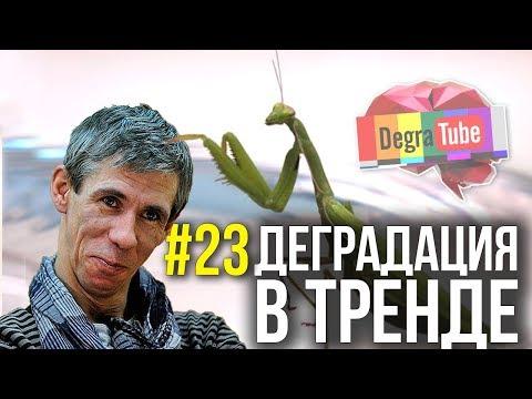 Деградация в тренде #23 | ПАНИН создал КАНАЛ, Богомол в ВАКУУМЕ и МОНСТРЫ НА ВИДЕО