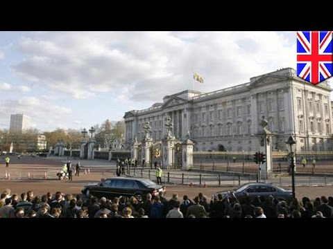 Buckingham Palace ammo probe: Royal protection officer arrested...