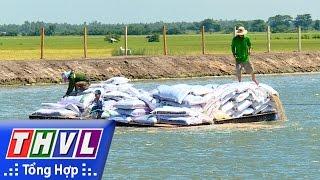 THVL | Nhịp sống đồng bằng: Nghề nuôi cá tra ở Hồng Ngự