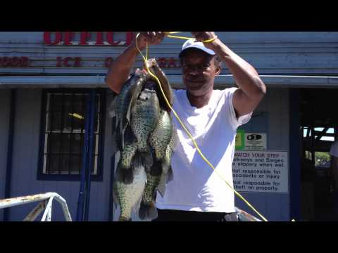 BNB Crappie Fishing:  NEW Uncle Ricks Duck Cove Marina!