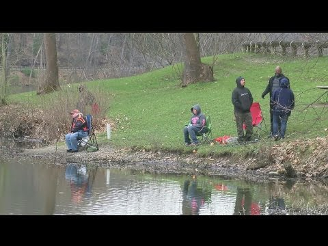 Annual delivery of trout to Mill Creek marks start of spring