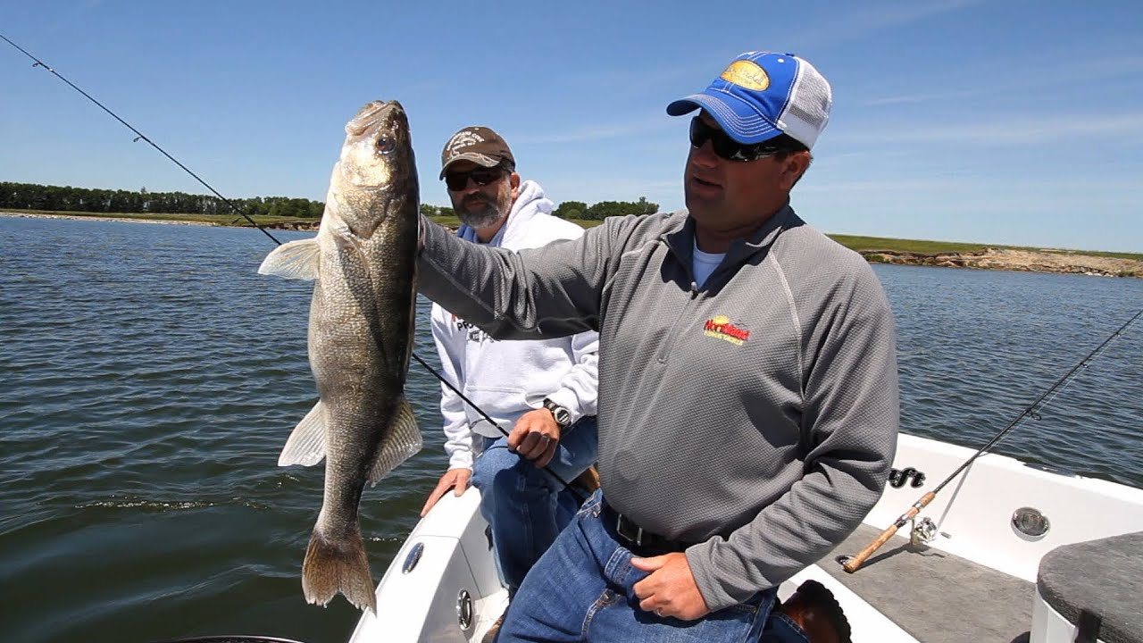 Sd glacial lakes walleyes youtube for South dakota out of state fishing license
