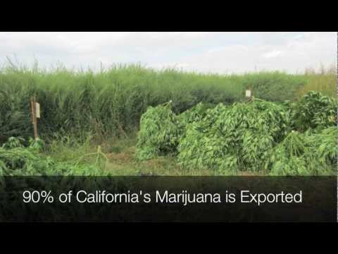 2 Day Tour:  Fresno County Sheriff, Medical Marijuana Eradication
