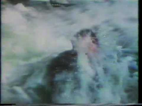 Beyond the Poseidon Adventure 1979 TV trailer