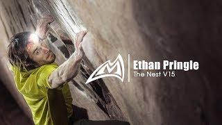 Ethan Pringle   The Nest V15