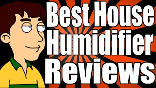 Best House Humidifier Reviews