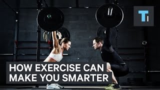 A neuroscientist explains how exercise can make you smarter