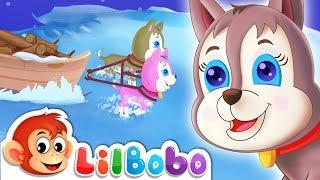 Bingo Song | Little BoBo Nursery Rhymes - FlickBox Kids Songs