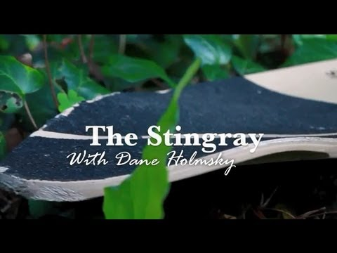 The StingRay with Dane Holmsky