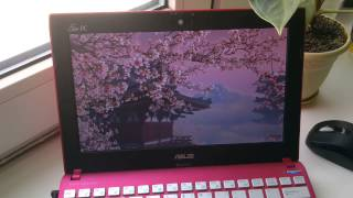 3Planesoft Blooming Sakura 3D Screensaver @ ASUS Eee PC 1025CE Pink