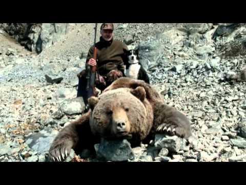Lāču medības Magadānā / Охота на медведей в Магадане